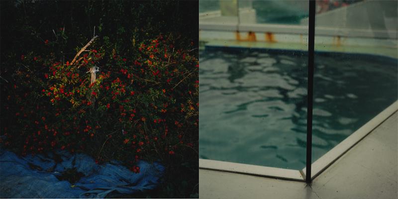 船木 菜穂子|Nahoko  Funaki 作品(1)の画像