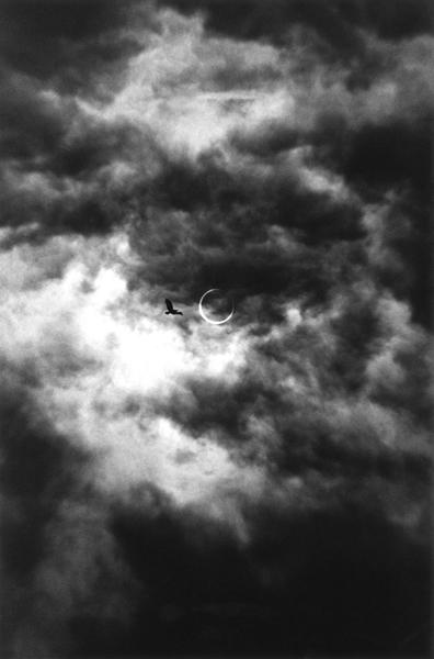 小平 雅尋|Masahiro Kodaira 作品(2)の画像