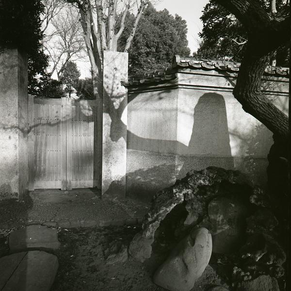 相馬 泰|Yasushi Soma 作品(1)の画像